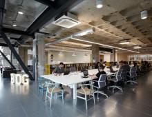 BDG Studio